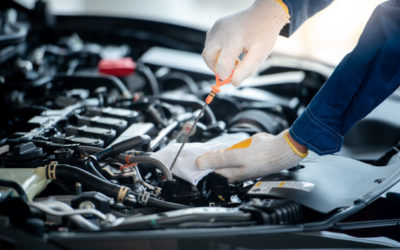 How Many Months Should You Wait to Change Your Oil?